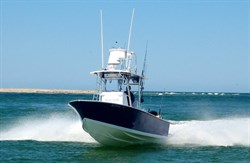 Dragonfly Sportfishing Charters